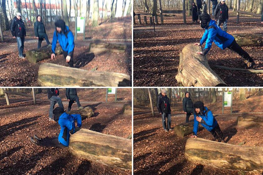 Übung am Baum