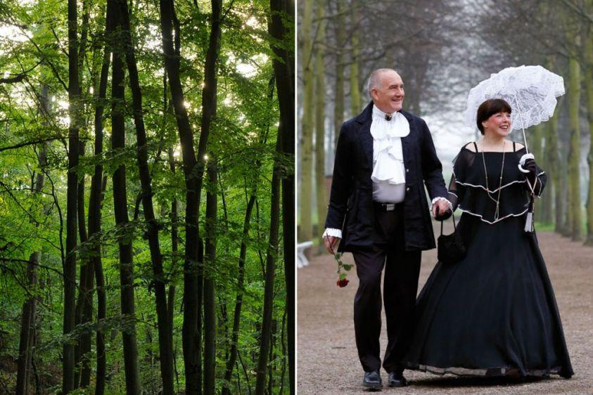 Tag des Waldes, Heilwald Heringsdorf