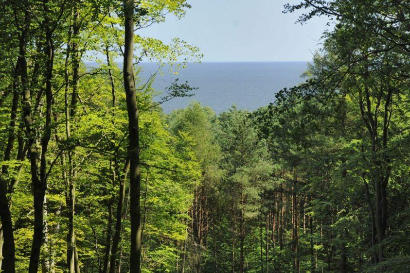 Aussicht von der ehemaligen Bismarkwarte auf die Ostsee